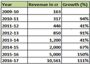 patanjali revenue